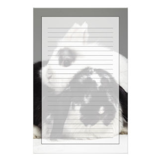 Dwarf-eared rabbit leaning over lop-eared stationery design