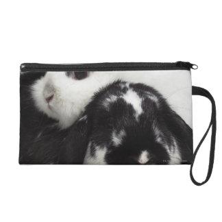 Dwarf-eared rabbit leaning over lop-eared wristlet purse
