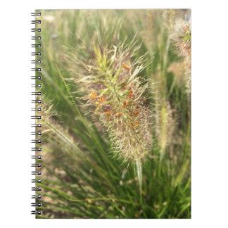 DWARF FOUNTAIN GRASS NOTEBOOK
