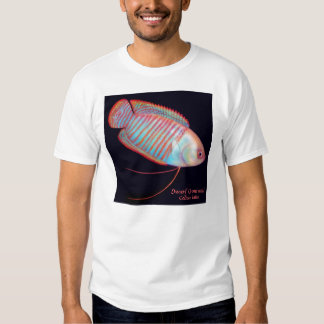 Dwarf Gourami Tropical Fish T-Shirt