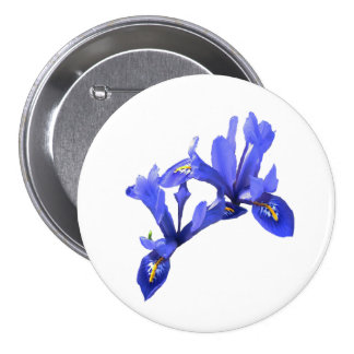 Dwarf Iris Button