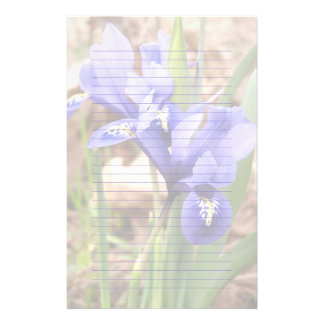 Dwarf Irises Lined or Unlined Stationery