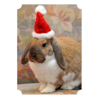 Dwarf lop bunny or rabbit card