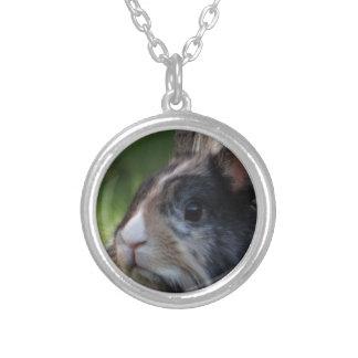 dwarf-rabbit-978y round pendant necklace