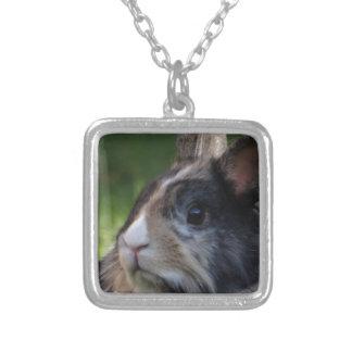 dwarf-rabbit-978y square pendant necklace