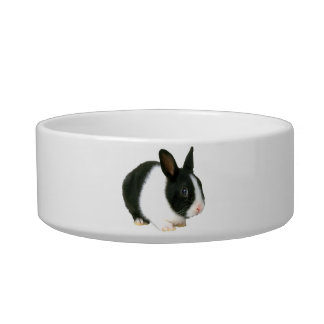 Dwarf Rabbit Bunny Pet Bowl