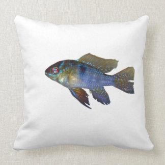 Dwarf Ram aquarium Fish Pillow