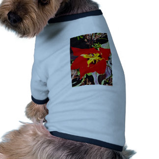 Dwarf tulip  flowers dog tee