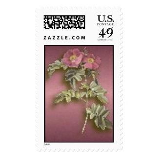 Dwarf Wild Roses Stamp