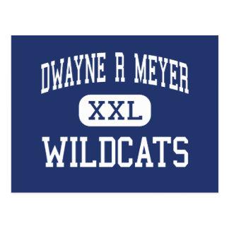 Dwayne R Meyer Wildcats Middle River Falls Postcard