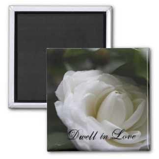 Dwell in Love Magnet