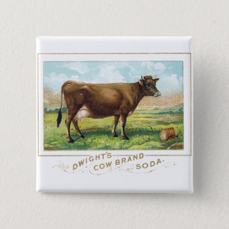 Dwight's Cow Brand Soda Pinback Button