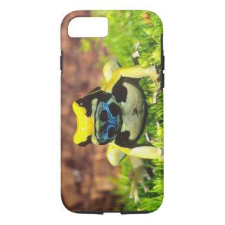 Dyeing Poison Frog, Dendrobates tinctorius, iPhone 7 Case