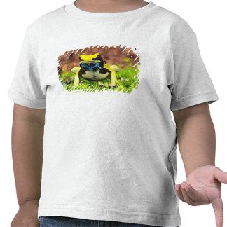 Dyeing Poison Frog, Dendrobates tinctorius, Shirt