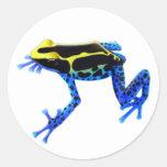 Dyeing Poison Frog Sticker