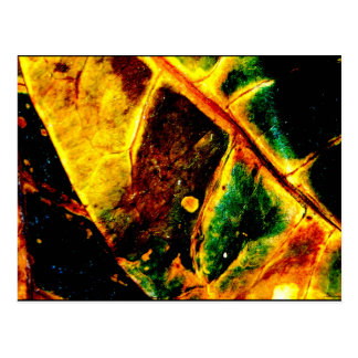 """Dying Leaf"" JTG Art Postcard"