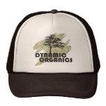 Dynamic Organics Hat