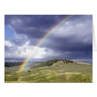Dynamic Rainbow Large Greeting Card