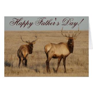 E0001 Bull Elk Greeting Cards