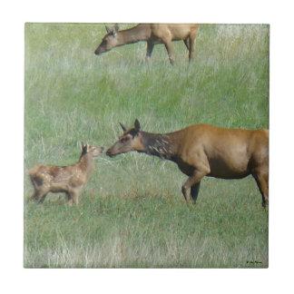 E0003 Cow Elk and Calf Tiles