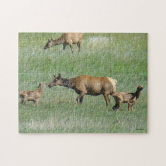 E0003 Cow Elk and Calves Jigsaw Puzzle