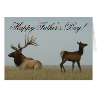 E0005 Bull Elk and Yearling Greeting Cards