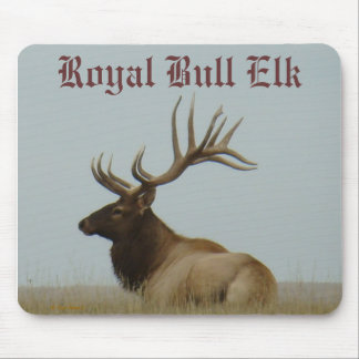 E0005 Bull Elk and Yearling Mouse Pad