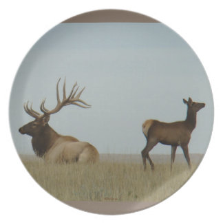 E0005 Bull Elk and Yearling Plate