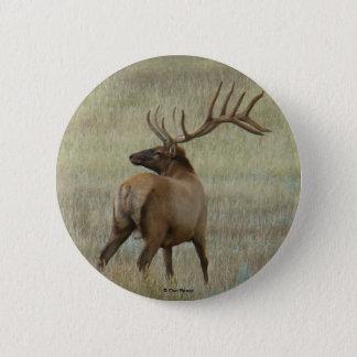 E0006 Bull Elk in Velvet button