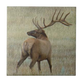 E0006 Bull Elk in Velvet Tile