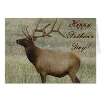 E0008 Bull Elk in Velvet Cards