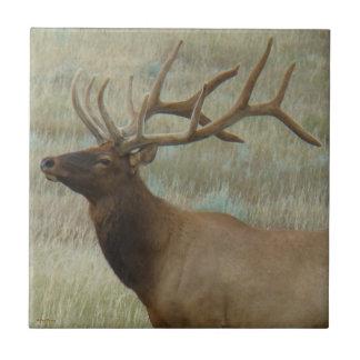 E0009 Bull Elk in Velvet Tile