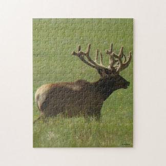 E0012 Bull Elk 1 Bull or 2 ? Jigsaw Puzzle
