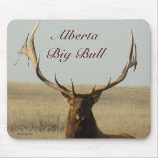E0013 Bull Elk Mouse Pad