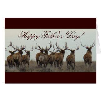 E0017 Bull Elk Greeting Cards