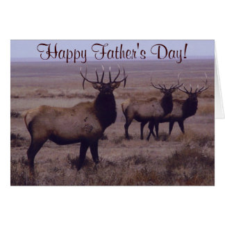 E0019 Bull Elk Double Drop Tines Greeting Cards