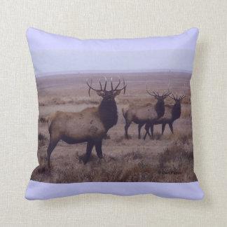 E0019 Bull Elk Double Drop Tines Throw Pillow