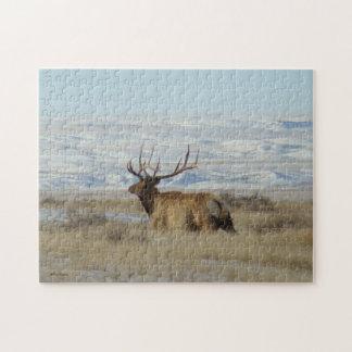 E0022 Bull Elk Jigsaw Puzzle