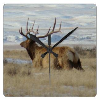 E0022 Bull Elk Square Wall Clock