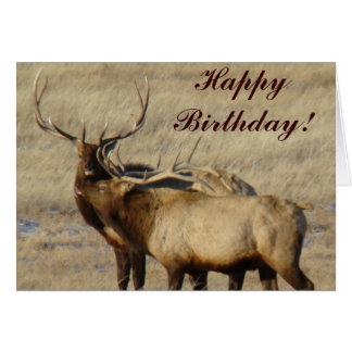 E0024 Bull Elk Card