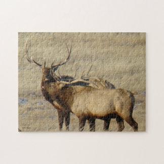 E0024 Bull Elk Jigsaw Puzzle