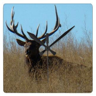 E0026 Bull Elk Square Wall Clock