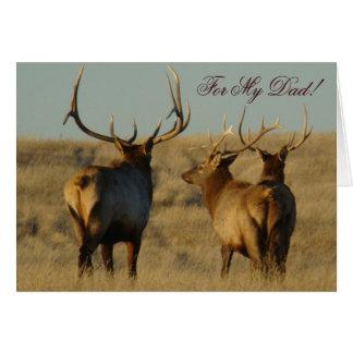 E0028 Bull Elk Greeting Cards