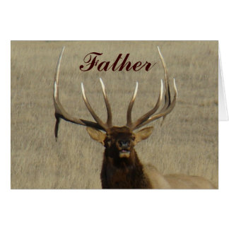 E0029 Bull Elk Head Cards