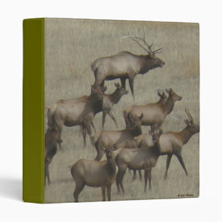 E0037 Bull Elk with Cows binder