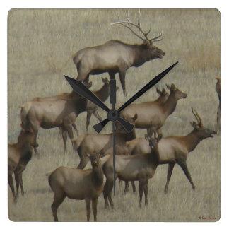 E0037 Elk Herd Square Wall Clock