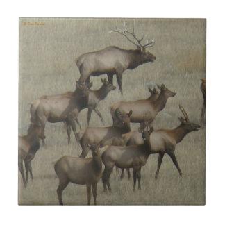 E0037 Elk Herd Tile