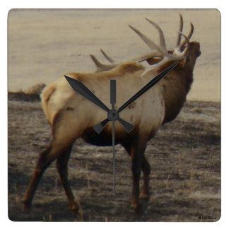 E0039 Bull Elk Bugling Square Wall Clock