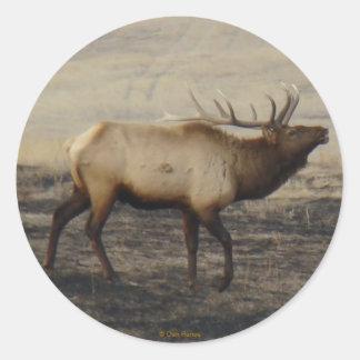 E0040 Bull Elk Bugler sticker