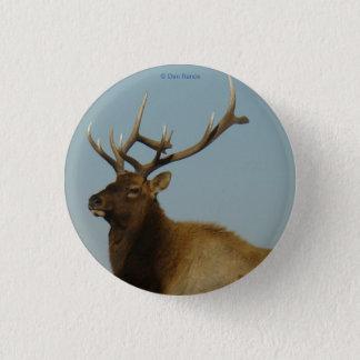 E0042 Young Bull Elk Button
